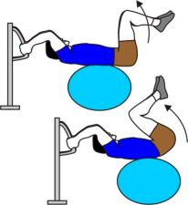 exercise ball reverse crunches