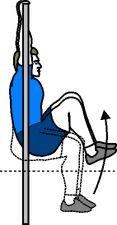 Hanging Knee Raises