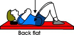 Good Lower Ab Workout for Beginners